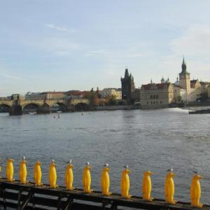 Charles Bridge with yellow pinguins